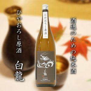 特別純米ひやおろし|白龍酒造