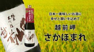 日本一美味しいお酒に幸せと願いを込めて 越前岬「さかほまれ」